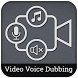 Dedugging Video Voice