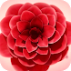 Flower Blossomed Live Wallpap by Lucas Wallpapers