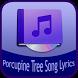 Porcupine Tree Song&Lyrics