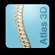 Atlas 3D Artritis Reumatoide by Proengsoft