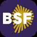 BSF - Brussels Summer Festival by Apptree