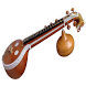 Beautiful Veena Recitals by Mahesh Padmai
