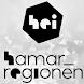 Hamarregion