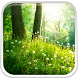 Forest Live Wallpaper by Live Wallpaper HQ