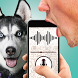 Dog language translator joke by AppAche