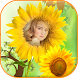 Sunflower photo frame by Photo Sky Maker