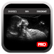 Pregnancy Test Simulator by BananaApps
