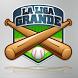 The Big League: Baseball by Edward Medina