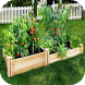 DIY vegetable garden by Harumando