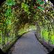Escape Games - Garden by Odd1 Apps