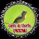 O canto melancólico da Patativa-chorona by Raja Burung App