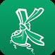 Paka Krabi Guide
