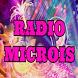 Radio Microis