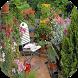 Balcony Garden Design Ideas by Faizzah