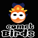 Comet Birds by Gerben Bonder