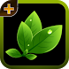 Herbal plants and Cures by Publish This, LLC