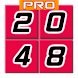 2048 PuzzlePro by domainsrock