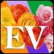 Ev Flower