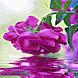 Purple Rose Swining LWP by Daksh Apps