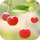 Sweet Cherry Live Wallpaper by DynamicArt Creator