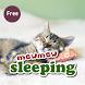 Mewmew Mewmew Cat Alarm Clock by JLD International,inc