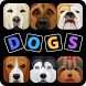 Doggy Dogs Quiz by Free Cool Trivia Games