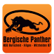 HSG Bergische Panther by Andreas Gigli