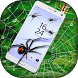 Spider On Screen by Prank World