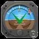 Cessna 172R Companion. by Boris Alexandrov