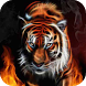 Scintillating Tiger on Fire WP by Volfcan