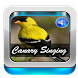 Canary Singing Birds Sounds by Ganiarto Media Digital