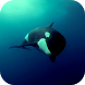 Orca 3D Video Wallpaper
