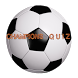 The Football Champions Quiz by Stefan Schlacher