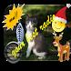???? Radio Viva Navidad free Music Player Online by DRO LAZO DESARROLLADORES