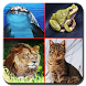 Voices of animals for children by Saqer Apps