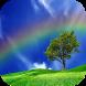 Rainbow Images by Karim Gul