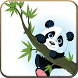 Panda Animated Wallpapers by Ani Me