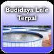 Budidaya lele terpal