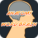 Anatomy Word Brain by CssCompany