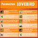 Perawatan Burung Lovebird by akutresno
