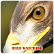 Bird Watching by Anand Tech Media Pvt. Ltd.,