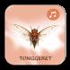 Suara Tonggeret Hutan Merdu