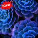 Blue flower wallpaper by Seaweedsoft