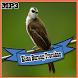 Kumpulan Kicau Burung Trucukan Mp3 2017 by RinjaniApp