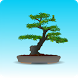 Bonsai Care by App_Lab