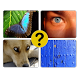 4 Pics 1 Word by logic brain puzzles