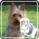 Photos of Dogs by Addictive Free Apps