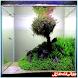 Aquascape Design by kidroidapp