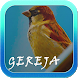 Kicauan Burung Gereja Masteran by AD Apps