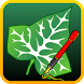 Ivy Draw: Vector Drawing by Shoebill Software
